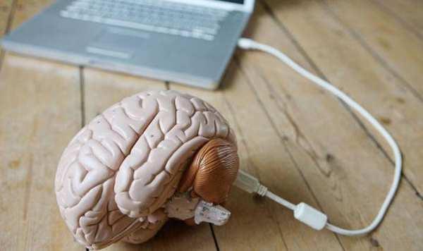 駭客帝國成真?知識或可直接上傳到大腦